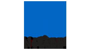 NetApp-logo